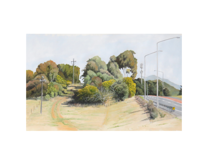 Cotter Road, 2015 gouache on paper, 700x600 framed. photo by Tony Oates
